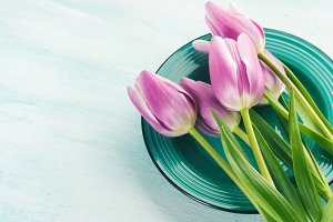 Spring easter purple tulip floral green pastel color background