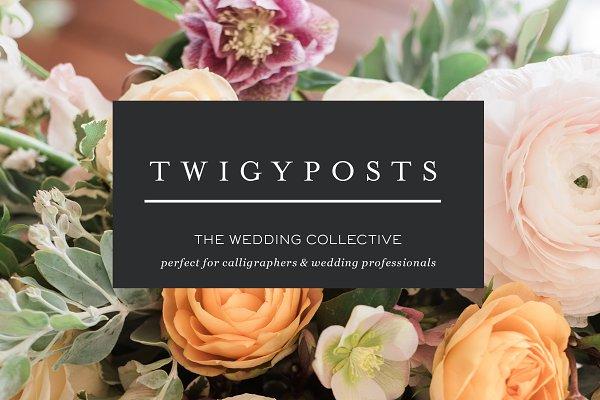 Ultimate Wedding Stock Photo Bundle
