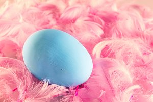 Pastel Easter egg lying on feathers