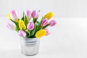 Bouquet of fresh tulips in a metal pot.