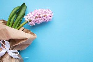 Spring flower on blue background