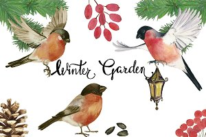 Winter Garden watercolor cliparts