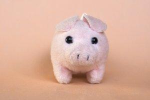 pink toy pig