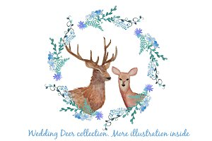 Wedding deer collection