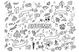 Vector set of Different Hand Drawn Autumn Design Elements. Vector Autumn Doodle Illustration. Autumn Doodles. Coloring book. Leaves, curls, mushrooms, hedgehog, chestnut