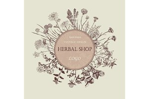 Herbal shop logo. Hand drawn design.