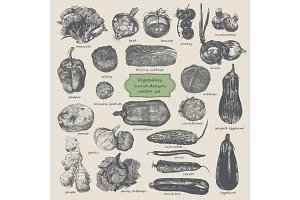 Vegetables hand drawn vector set.