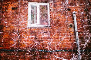 Red brick wall with a window