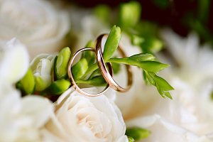Wedding rings close-up on branch