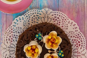 Cake on color background