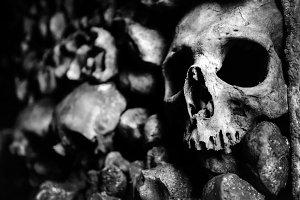 The skulls and bones