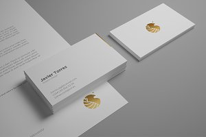 Business Card Mockup Professional