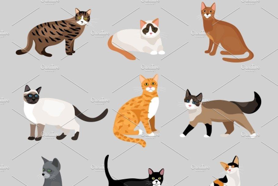 cute cartoon kitties or cats