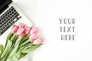 Pink Tulips & MacBook Stock Photo