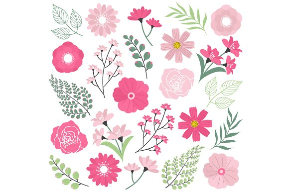 Pink wedding flowers illustrations creative market mightylinksfo