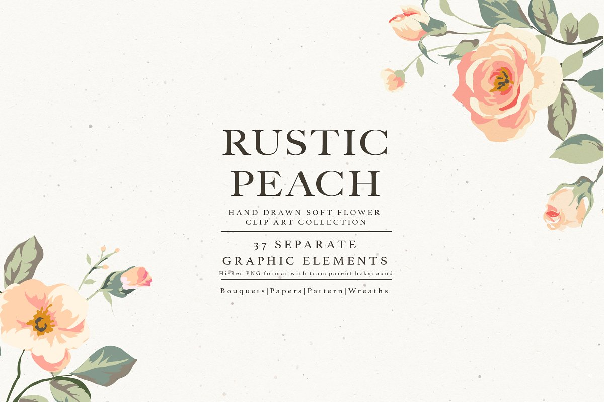 Flower Collection Rustic Peach Custom Designed Illustrations