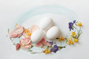 white eggs on a paper