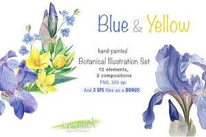 BLUE & YELLOW set