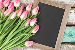 Tulip flowers with blackboard