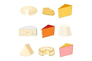 Delicious fresh cheese variety italian dinner icon flat dairy food and milk camembert piece different delicatessen gouda set isolated vector illustration.