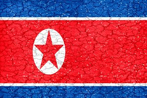 Norht Korea Grunge Flag
