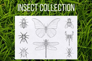 Geometric insect set