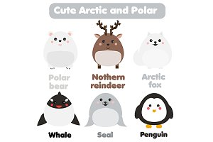 Cute polar and arctic animals