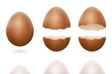 Broken eggs cracked
