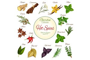 Hot spice, herb and condiment poster design