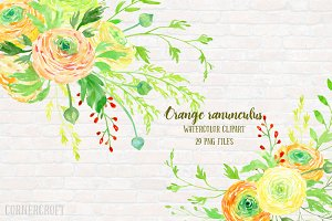 Watercolor Clipart Orange Ranunculus