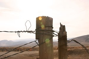 Barbed Wire & Post
