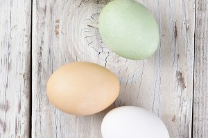 Five Different Eggs