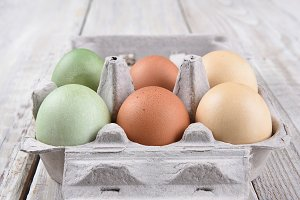 Carton of Different Eggs