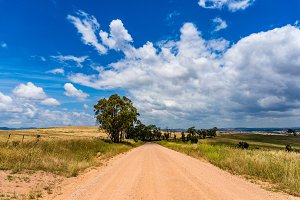 Australian outback road. Unsealed rural dirt road, track on sunny day. NSW, Australia