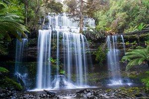 Beautiful waterfall in rainforest. Russel Falls, Mount Field National Park, Tasmania, Australia