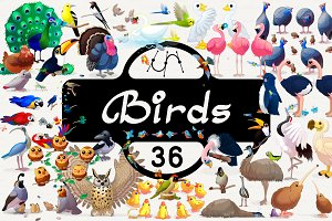 ♥ vector Birds set