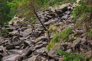 Rocky climb the mountain
