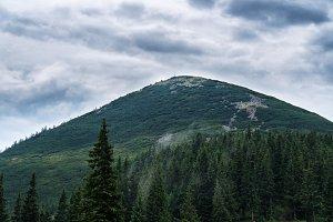 Ukraine Carpathian Mountain Chomiak