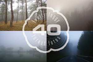 Foggy Forest Photo Pack