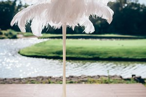 Feather wedding decoration. Outdoor, no people