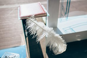 Feather wedding decoration in notebook. Outdoor, no people