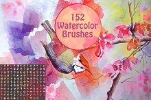 152 Watercolor Brushes