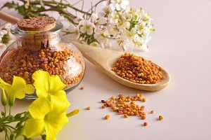 Grains of bee pollen elevated view