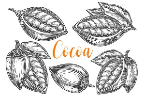 Cacao, cocoa hand drawn set