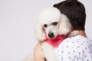 Man hug white poodle dog