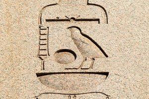 The egyptian inscription