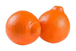 two orange tangerine or Mineola with leaf isolated on white background