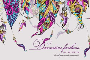 Decorative feathers vector set