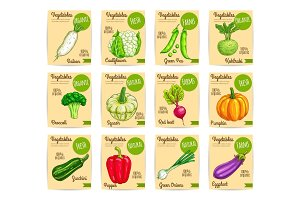 Organic fresh vegetable card, label, price tag set