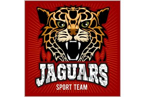 Sport team - Jaguar, wild cat Panther. Vector illustration, red background, shadow.